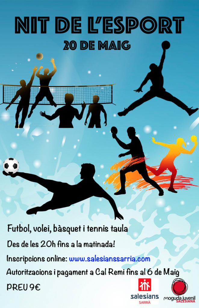 DAP_cartell nit de l'esport_1516